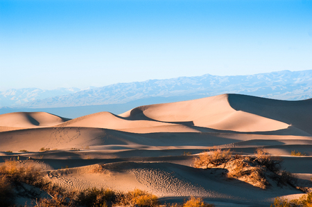 Evening at Mesquite Flat Sand dunes in Death Valley National Park 版權商用圖片