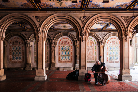bethesda: Central Park, Manhattan, New York, USA : FEB 5, 2015 : Street musician plays cello at Bethesda Terrace, Central Park, New York.