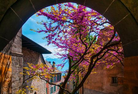 montreux: Old Village in Lavaux, Switzerland