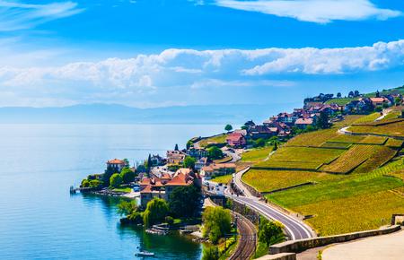 montreux: Vineyards in Lavaux against Geneva lake, Switzerland