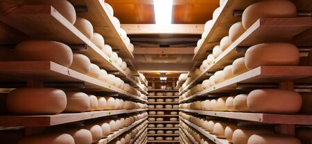 creamery: Cow milk cheese, stored in a wooden shelves and left to mature