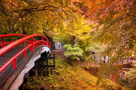 Rode brug en herfstbos in Ikaho Onsen, Gunma, Japan