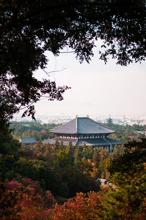 距離から主要なホールの東大寺ビュー。