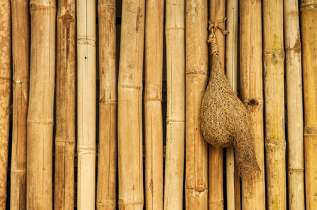 Old and grunge bamboo texture background with straw bird nest