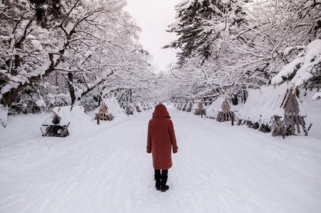 Tourist at snow covered road to Hirosaki Castle in winter season, Aomori, Tohoku, Japan