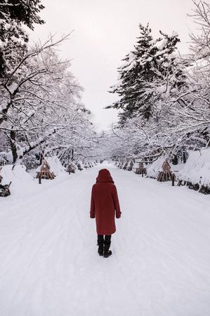 冬シーズン、青森、東北、日本の弘前城への道が雪で観光に覆われています。 写真素材