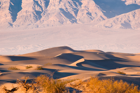 Evening at Mesquite Flat Sand dunes in Death Valley National Park Stock Photo