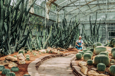FEB 3, 2018 Chiang Mai, Thailand : Tourist at Beautiful Cactus greenhouse with rocky ground and stones, Queen Sirikit Botanic Garden
