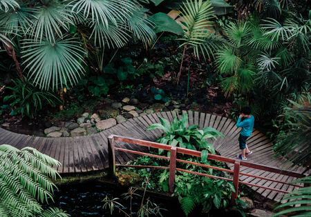 FEB 3, 2018 Chiang Mai, Thailand : Tropical forest greenhouse at Queen Sirikit Botanic Garden, Chiangmai, Thailand