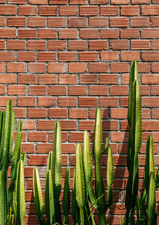 Faux pillar cactus with sharp spike and old red brick wall vertical image with copy space