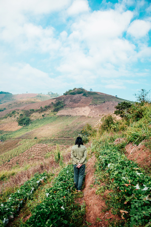 Female farmer is walking in strawberry farm on hills in Chiang Mai, Thailand