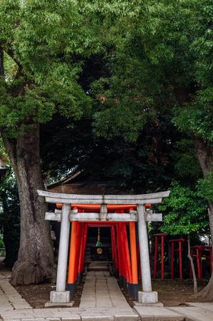 June 25, 2014 Shinagawa, Tokyo, Japan : Shinagawa Jinja or Shinagawa Shrine, built in 1187 as a residence of god Amanohiranomenomikoto. Also one of Tokyo-jissha (ten shrines of Tokyo), designated by Emperor Meiji. Editorial