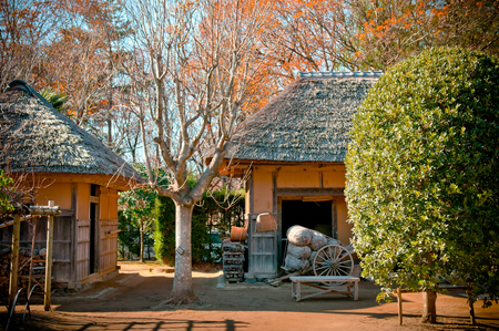 DEC 12, 2012 Chiba, JAPAN - Old traditional Edo thatched roof house at Boso No Mura Open air museum, Edo town ancient village 報道画像