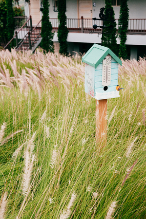 Vintage English country bird house in beautiful grass flowers field 写真素材