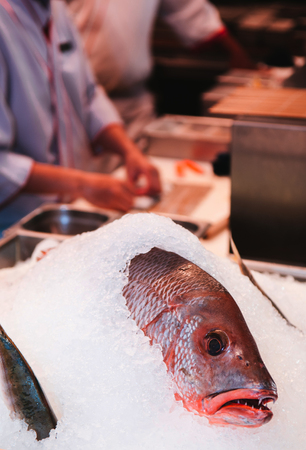 Fresh red snapper on ice for Sushi and Sashimi in Japanese restaurant. Fresh seafood in kitchen