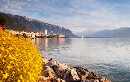 Montreux, Switzerland -   promenade at Geneva Lake with beautiful flower bushes and Swiss Alps view