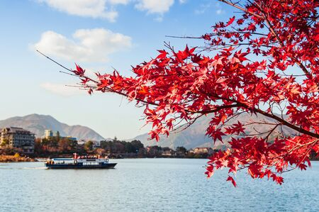 Beautiful Lake Kawaguchiko in winter with autumn maple selective focus at red leaves with blurry tourist scenic boat in background. Yamanashi - Japan