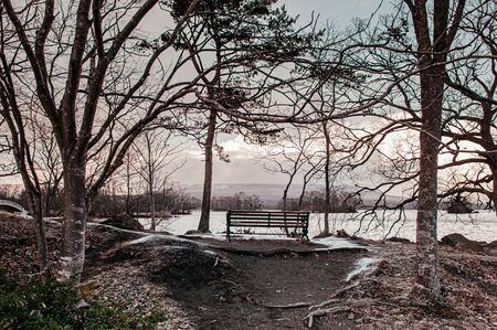 Onuma Koen Quasi -National park nature trail in peaceful cold winter with leafless tree and wooden bench. Hakodate, Hokkaido - Japan.