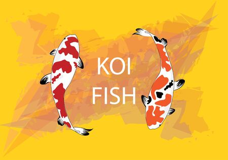 Colourful Koi Carp Fishes illustration graphic vector - Koi fish red, black and yellow pattern on abstract mastrad yellow background with copy space for design work or background wallpaper