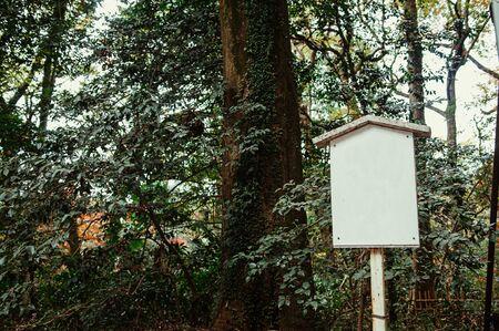 Vintage white Japanese signpost under big tree in forest near park. Tokyo. 写真素材