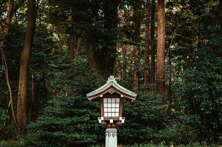 Old Japanese lamp decoration under big tree in shrine forest park near park. Tokyo.