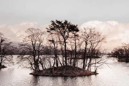 Onuma Koen Quasi -National park lake and leafless tree on small island in peaceful cold winter. Hakodate, Hokkaido - Japan.