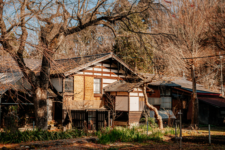 DEC 3, 2018 - Kakunodate, Japan - Kakunodate old Samurai town famous vintage Edo houses that became museum with big tree in Akita, Tohoku region