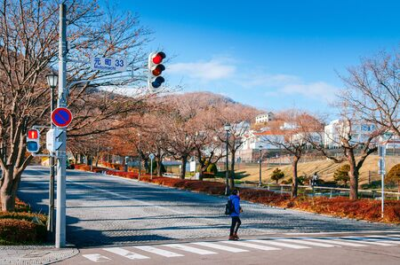DEC 2, 2018 Hakodate, JAPAN -Street traffic light and a guy crossing on Motomachi road with leafless tree along both sides with blue winter sky.