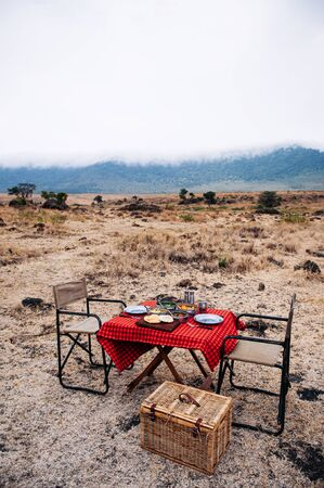 Safari outdoor picnic with African Tanzanian cuisine with baked Chapati nan flatbread on red table - African lunch meal for safari trip