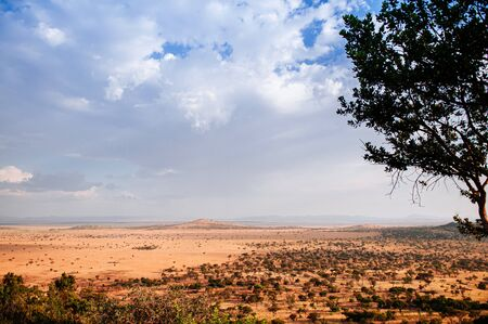 Serengeti Grumeti Reserve wildlife park grass plain beautiful wide landscape and mountain hill under evening warm light with clouds sky