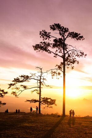 OCT 31, 2019 Loei, Thailand - Beautiful charming dramatic sunrise with silhouette pine trees and tourists at Pha Nok An cliff. Phu Kradueng National park peaceful morning. Stock Photo