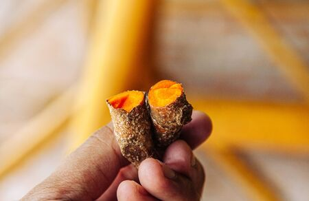 Turmeric rhizome fresh Tumeric roots herbal medicine plant in farmer hands - Close up shot.