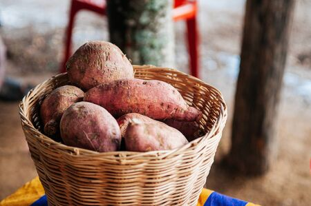 Fresh sweet potatoes or Japanese yam in wooden basket, asian organic farming product. Foto de archivo