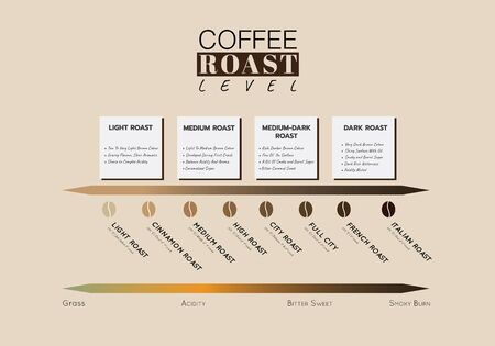 Level of coffee roasting. Level of Coffee Acidity and taste with roasting temperature and flavour note. Illustration vector graphic