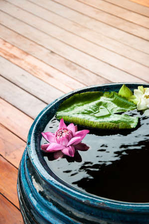 Oriental style pink lotus and green leaf in ceramic pot. Asian zen vintage decoration 写真素材