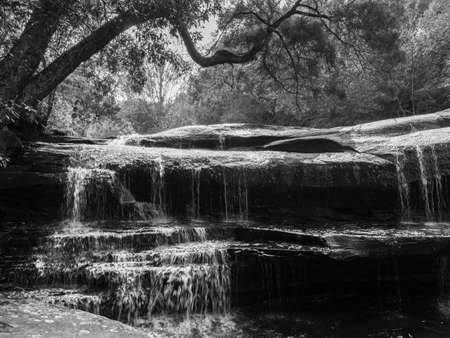 Beautiful water stream of waterfall with tropical tree and stone landscape. Pen Pob waterfall at Phu Kradueng National park, Loei - Thailand. Black and white 写真素材
