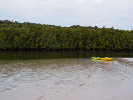 Kayak boat in mangrove forest canal on tropical island. Outdoor recreation kayaking sport. Koh Kood - Thailand. Фото со стока