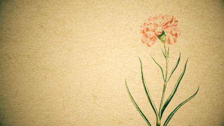 Blooming watercolor flower on old paper texture