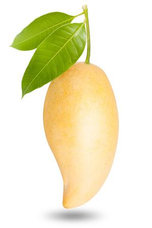 Yellow mango isolated on white background Standard-Bild
