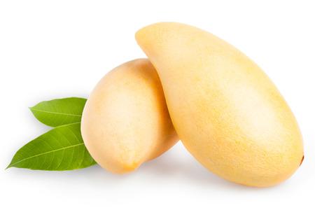 Gelbe Mango isolated on white background Standard-Bild - 31950678