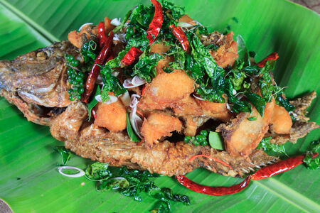river fish: Thai food style: Fried river fish with Thai Hearb
