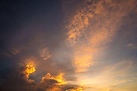 Paddy field with twilight sky.
