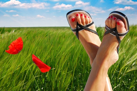 ecological feet crossed with two poppies photo