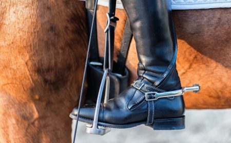 ankle strap: detailed view of a boot rider with spurs wheel Stock Photo