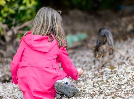 Porträt des kleinen Mädchens mit Nahrung zu einer Katze