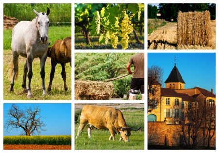 collage of french countryside landscape photo