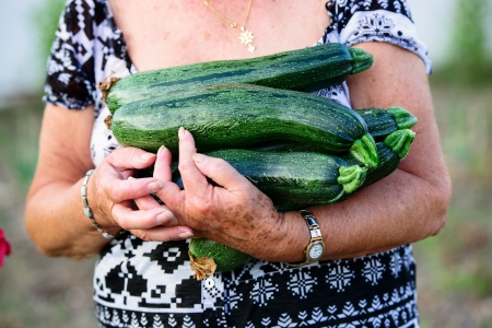 retired woman holding zucchini in her hands photo