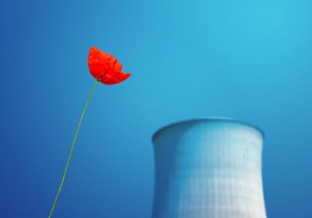 npp: nuclear power plants environmental issue