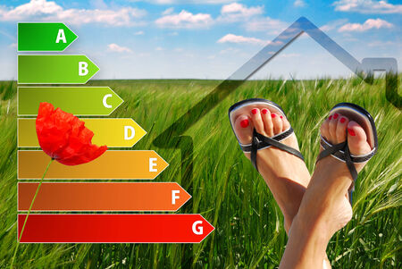 icon of house energy efficiency rating with nice feet, poppy and green background photo