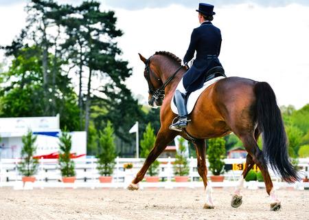dressage cavalo e cavaleiro mulher na competição de adestramento